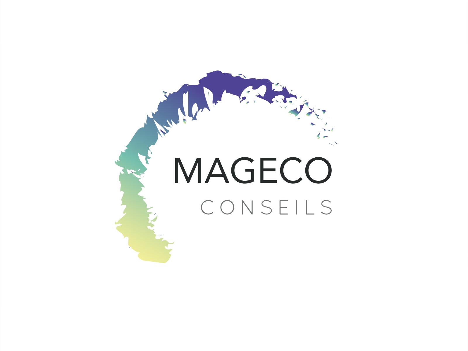 Création de Logo MAGECO Conseils 974
